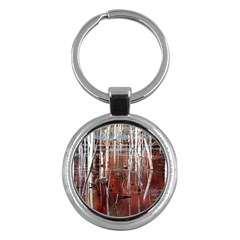 Swamp2 Filtered Key Chain (round)