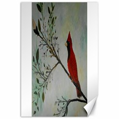 Sweet Red Cardinal Canvas 24  X 36  (unframed) by rokinronda