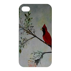 Sweet Red Cardinal Apple Iphone 4/4s Hardshell Case by rokinronda