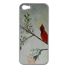 Sweet Red Cardinal Apple Iphone 5 Case (silver) by rokinronda