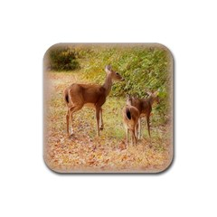 Deer In Nature Drink Coaster (square) by uniquedesignsbycassie