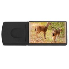 Deer In Nature 4gb Usb Flash Drive (rectangle) by uniquedesignsbycassie