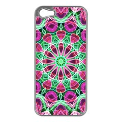 Flower Garden Apple Iphone 5 Case (silver) by Zandiepants