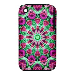 Flower Garden Apple Iphone 3g/3gs Hardshell Case (pc+silicone) by Zandiepants