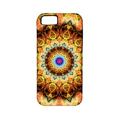 Ochre Burnt Glass Apple Iphone 5 Classic Hardshell Case (pc+silicone) by Zandiepants