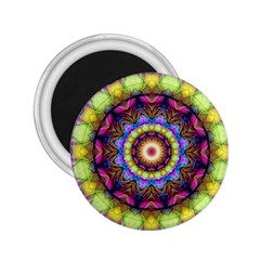 Rainbow Glass 2 25  Button Magnet by Zandiepants
