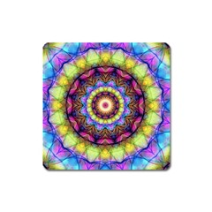Rainbow Glass Magnet (square) by Zandiepants