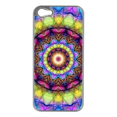 Rainbow Glass Apple Iphone 5 Case (silver) by Zandiepants