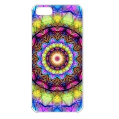 Rainbow Glass Apple Iphone 5 Seamless Case (white) by Zandiepants