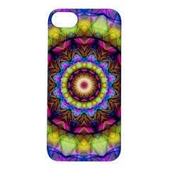 Rainbow Glass Apple Iphone 5s Hardshell Case by Zandiepants