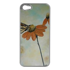 Monarch Apple Iphone 5 Case (silver) by rokinronda