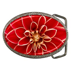 Red Dahila Belt Buckle (oval) by Colorfulart23