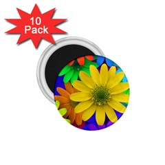 Gerbera Daisies 1 75  Button Magnet (10 Pack) by StuffOrSomething