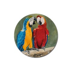 Feathered Friends Magnet 3  (round)