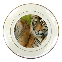 Soft Protection Porcelain Display Plate by TonyaButcher