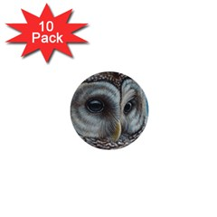 Barred Owl 1  Mini Button (10 Pack)