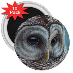 Barred Owl 3  Button Magnet (10 Pack)