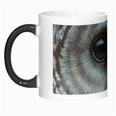 Barred Owl Morph Mug by TonyaButcher