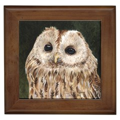 Tawny Owl Framed Ceramic Tile