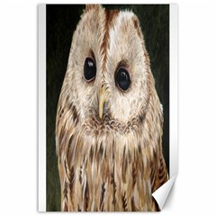 Tawny Owl Canvas 24  X 36  (unframed)