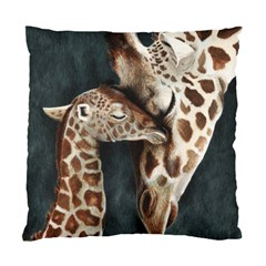 A Mother s Love Cushion Case (two Sided)  by TonyaButcher