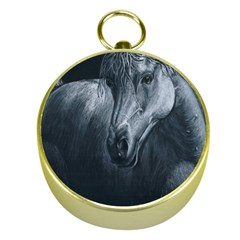 Equine Grace  Gold Compass by TonyaButcher