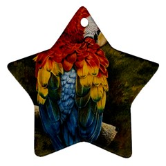 Preening Star Ornament (two Sides)