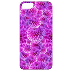 Purple Dahlias Apple Iphone 5 Classic Hardshell Case by FunWithFibro