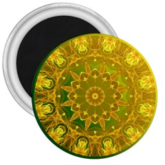 Yellow Green Abstract Wheel Of Fire 3  Button Magnet