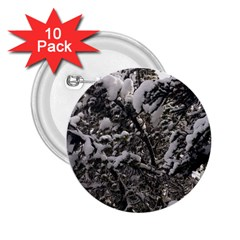 Snowy Trees 2 25  Button (10 Pack) by DmitrysTravels
