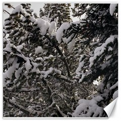 Snowy Trees Canvas 16  X 16  (unframed)