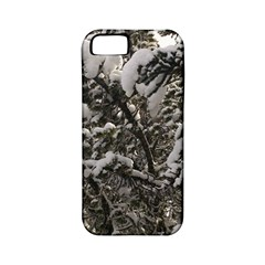 Snowy Trees Apple Iphone 5 Classic Hardshell Case (pc+silicone)