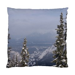 Trees Cushion Case (two Sided)  by DmitrysTravels