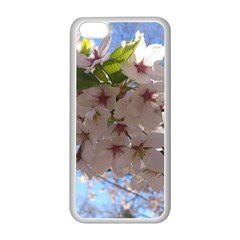 Sakura Apple Iphone 5c Seamless Case (white) by DmitrysTravels