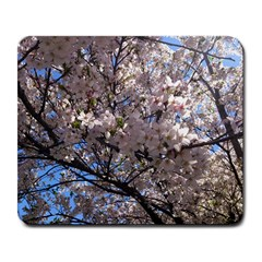 Sakura Tree Large Mouse Pad (rectangle) by DmitrysTravels