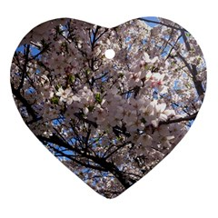 Sakura Tree Heart Ornament (two Sides) by DmitrysTravels