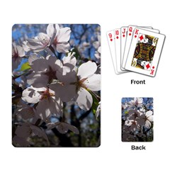 Cherry Blossoms Playing Cards Single Design by DmitrysTravels