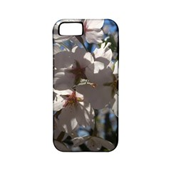 Cherry Blossoms Apple Iphone 5 Classic Hardshell Case (pc+silicone)