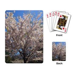 Cherry Blossoms Tree Playing Cards Single Design by DmitrysTravels