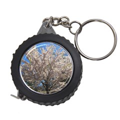 Cherry Blossoms Tree Measuring Tape by DmitrysTravels