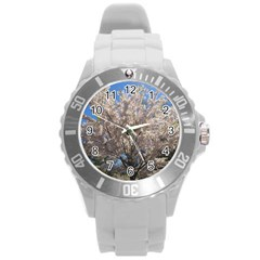 Cherry Blossoms Tree Plastic Sport Watch (large) by DmitrysTravels