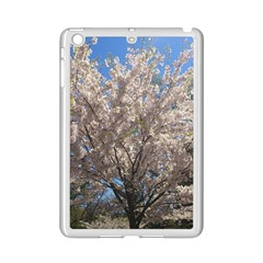 Cherry Blossoms Tree Apple Ipad Mini 2 Case (white) by DmitrysTravels