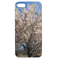 Cherry Blossoms Tree Apple Iphone 5 Hardshell Case With Stand by DmitrysTravels