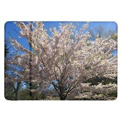 Cherry Blossoms Tree Samsung Galaxy Tab 8 9  P7300 Flip Case by DmitrysTravels