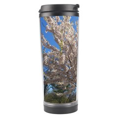 Cherry Blossoms Tree Travel Tumbler