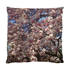 Sakura Cushion Case (two Sided)  by DmitrysTravels