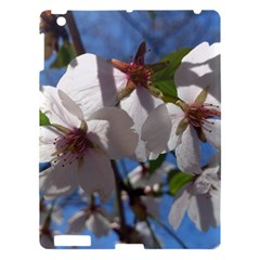 Cherry Blossoms Apple Ipad 3/4 Hardshell Case by DmitrysTravels