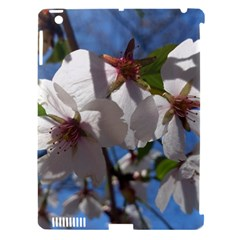 Cherry Blossoms Apple Ipad 3/4 Hardshell Case (compatible With Smart Cover) by DmitrysTravels