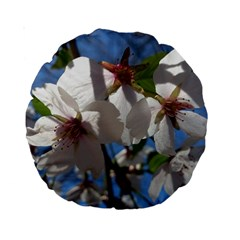 Cherry Blossoms 15  Premium Round Cushion  by DmitrysTravels