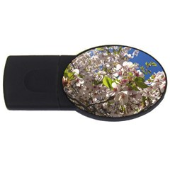 Cherry Blossoms 2gb Usb Flash Drive (oval)